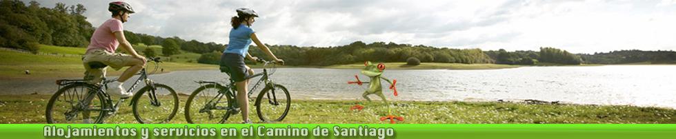 ALSA bici