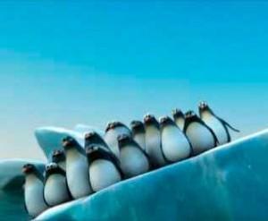 ALSA pinguinos