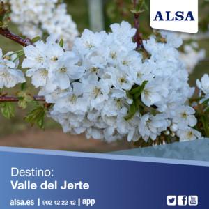 ALSA Valle Del Jerte