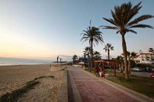 ALSA playa