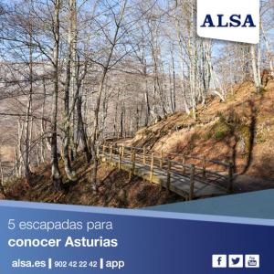 ALSA Asturias