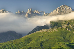 ALSA Post Asturias verde