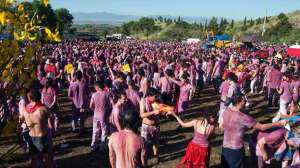 ALSA festival