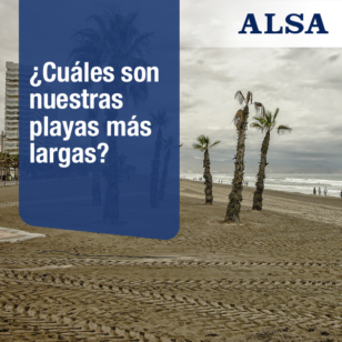 alsa playas largas