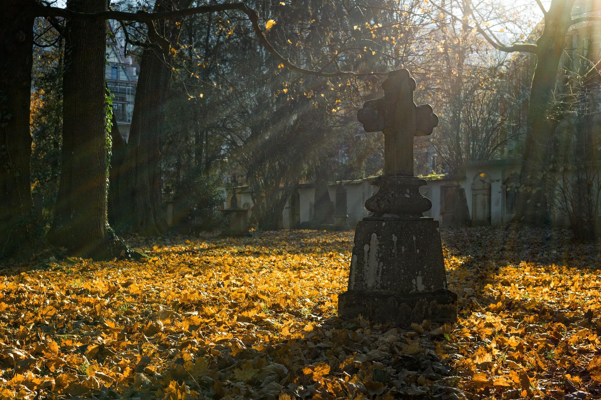 cementerio otoño españa alsa