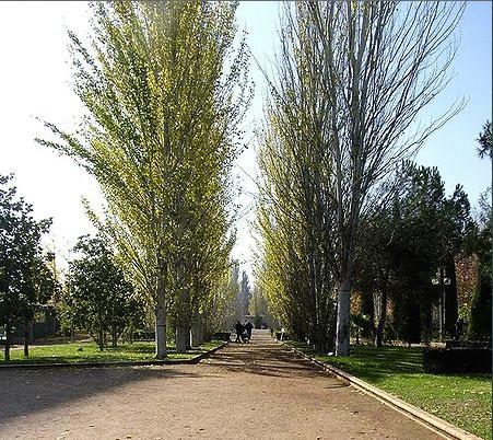 Parque García Lorca