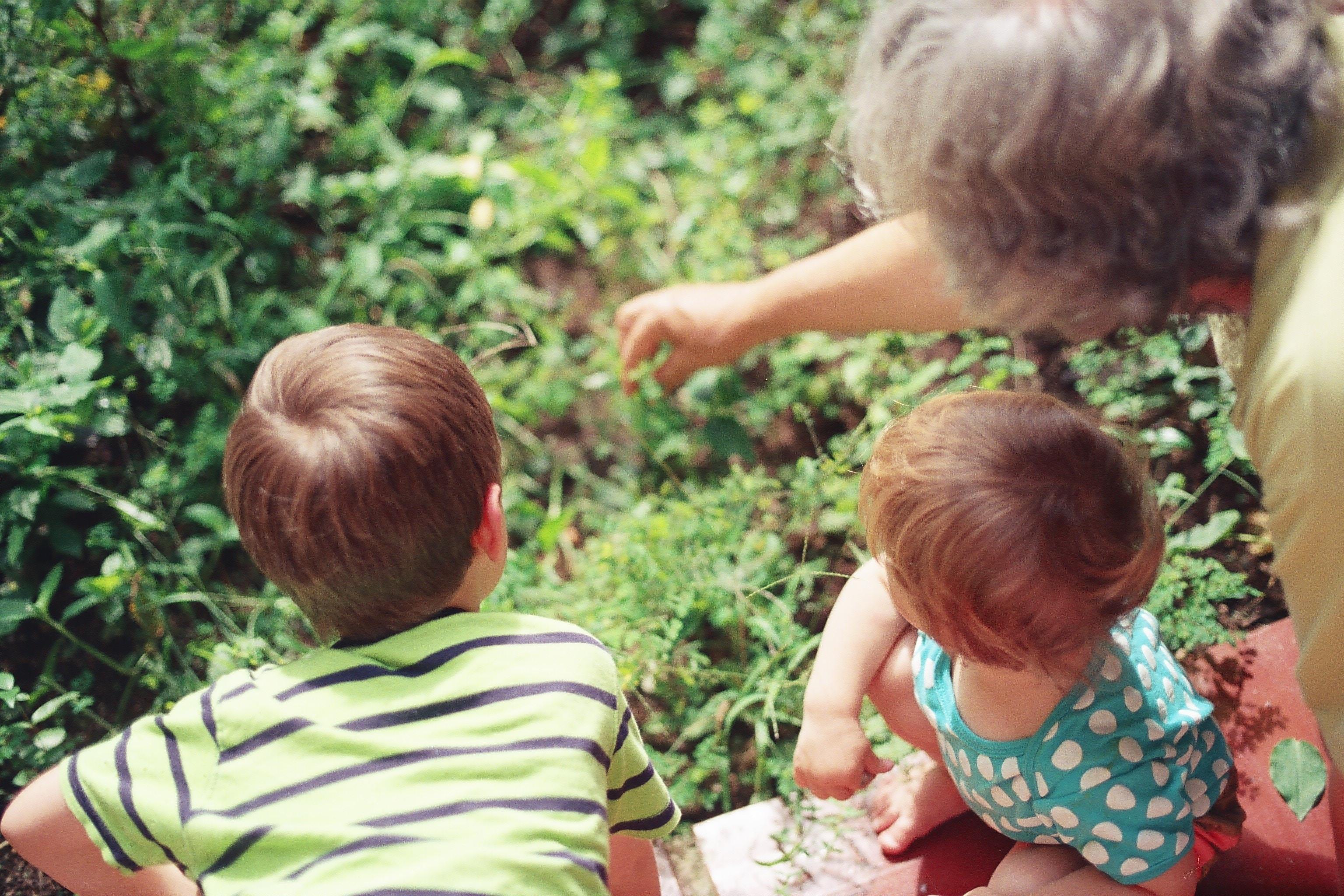 peliculas sobre abuelos