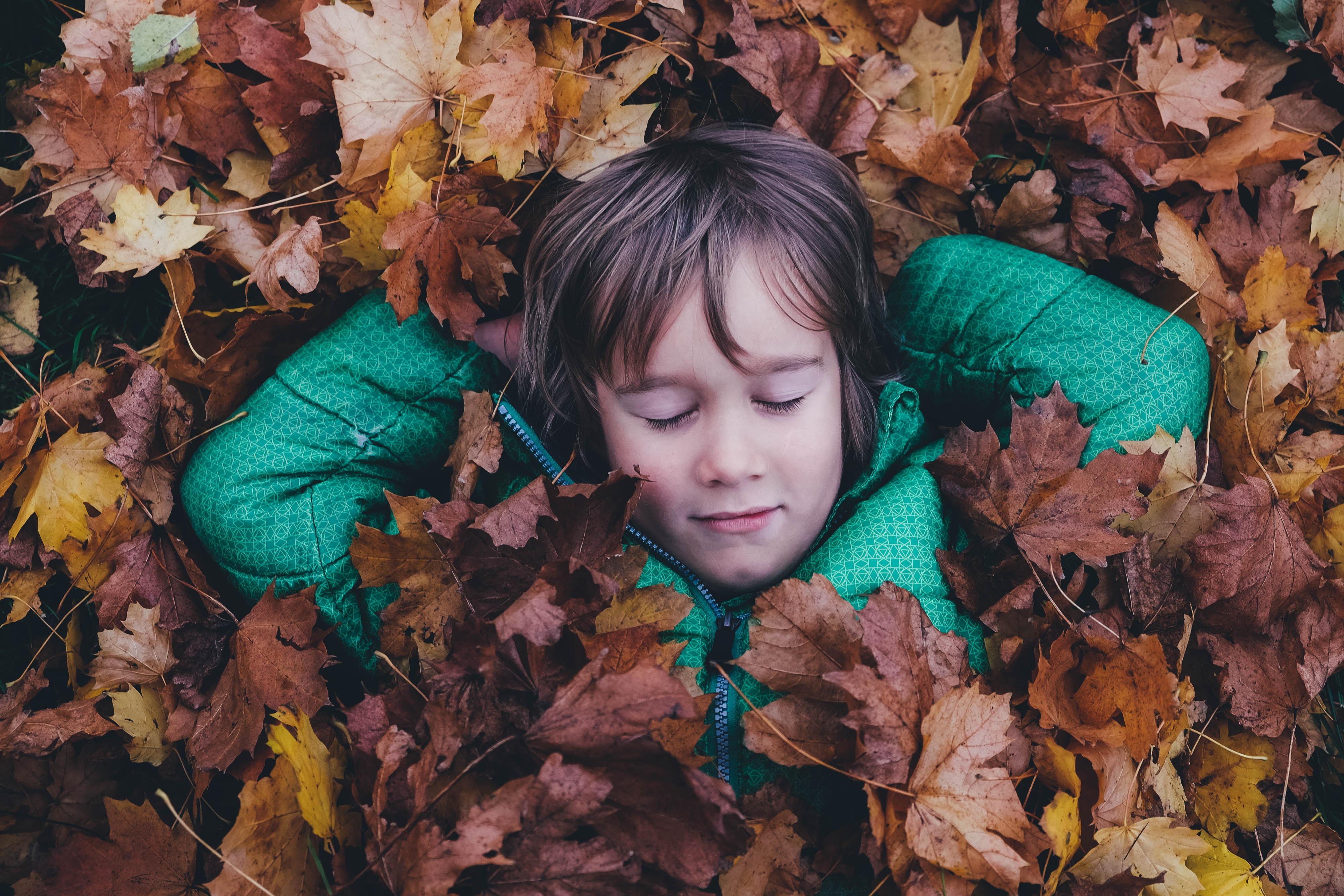 fotos de otoño bonitas