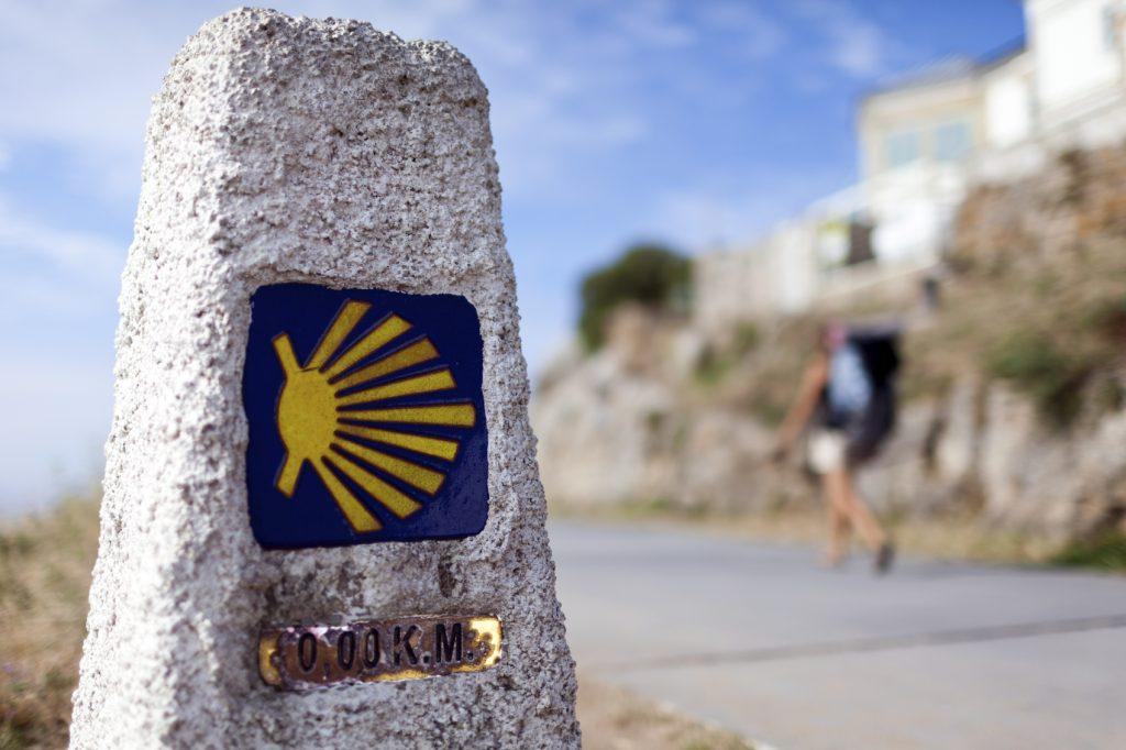 Camino Santiago Alsa motivos