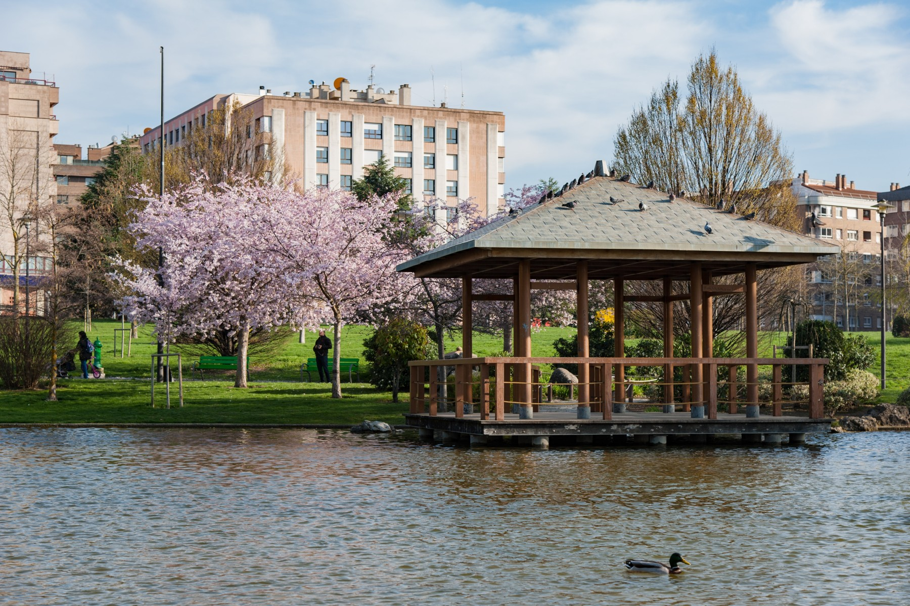 parque Yamaguchi jardin japones pamplona mejores planes viajar alsa bus